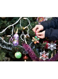 Украси елхата на National Geographic Kids и Kaufland